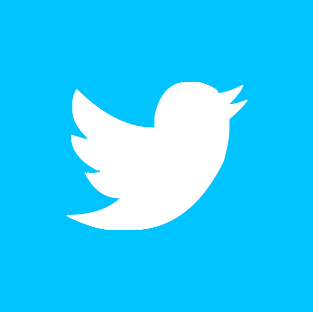 tech-savvy crowd on Twitter